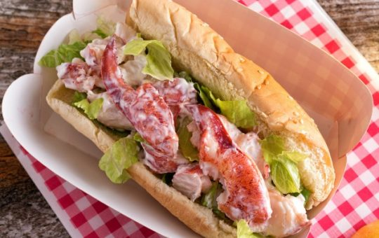 lobster roll at a picnic